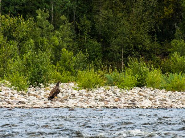 Alta River - Doets Reizen - Vakantie Noorwegen - Credits VisitNorway