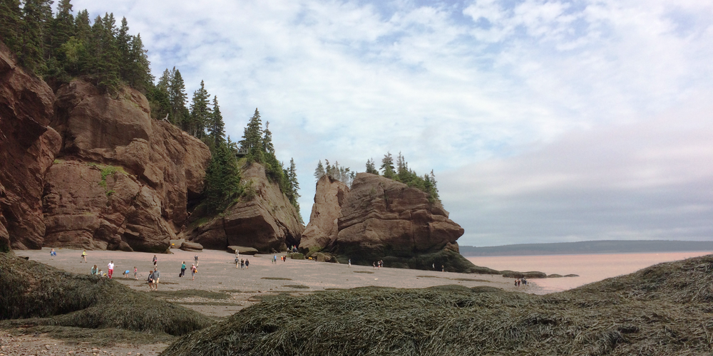 Hopewell Rocks bij de Bay of Fundy