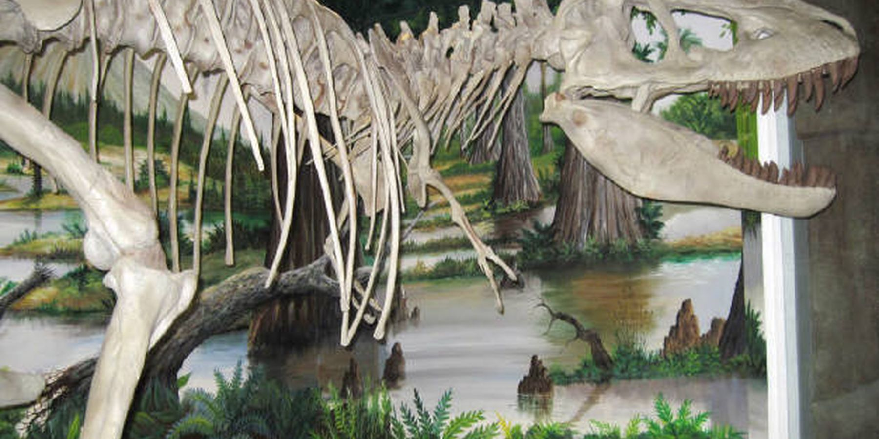 Dinosaur Store and Museum - Cocoa Beach - Florida - Doets Reizen