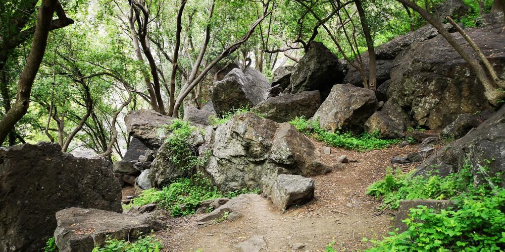 Salmon Creek Trail - Big Sur - Highway 1 - California - Amerika - Doets Reizen