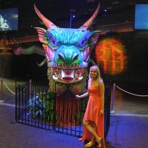 Las Vegas - terug komst - Dag 27 - Foto