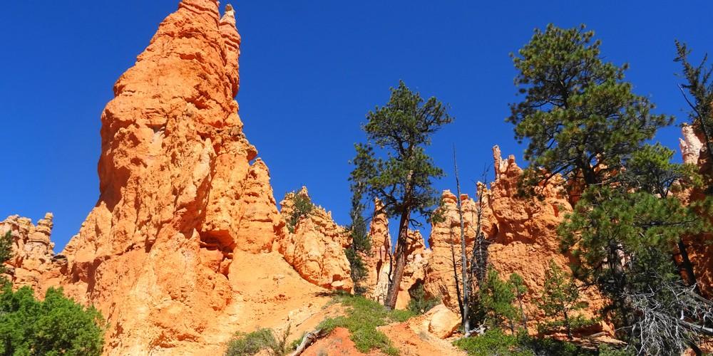Bryce Canyon National Park - Utah - Doets Reizen