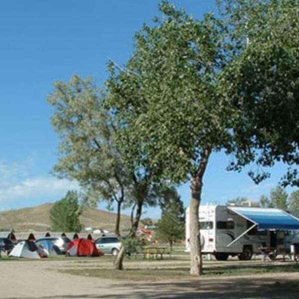 Cody Koa Holiday camping.JPG