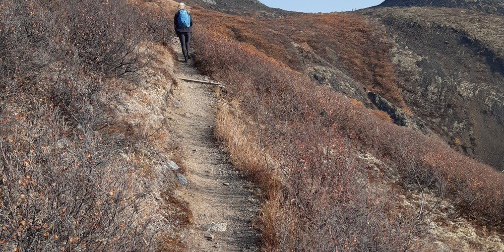 Goldensdies Hike - Tombstone Territorial Park - Yukon - Canada - Doets Reizen