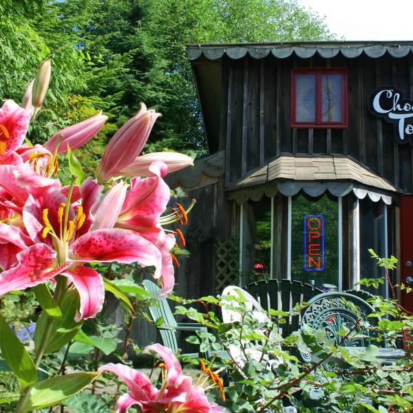 Tofino Food Tours - Pacific Rim National Park - Vancouver Island - British Columbia - Canada - Doets Reizen