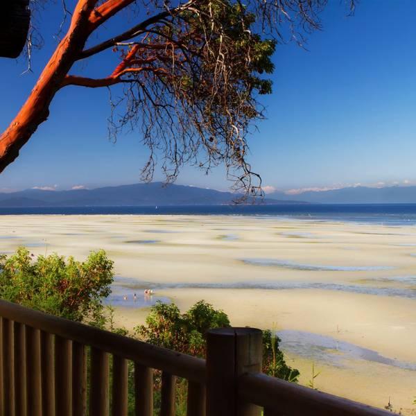 Tigh-Na-Mara Seaside - uitzicht