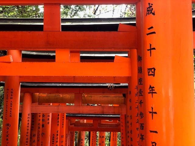 Bamboo Forest - Kyoto - Japan - Doets Reizen