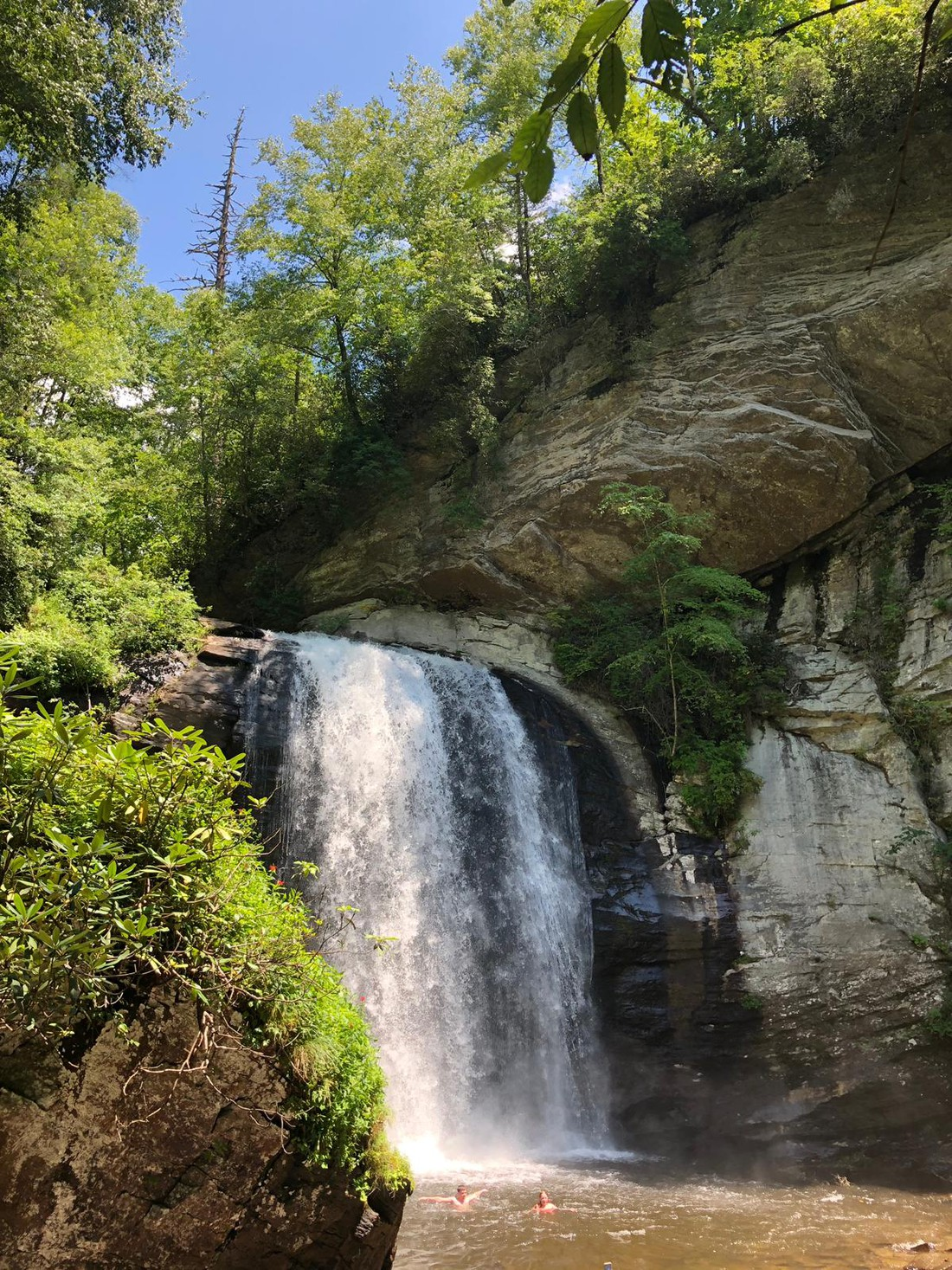 Looking Glass Falls - Great Smokey Mountains National Park - Tennessee - Amerika - Doets Reizen