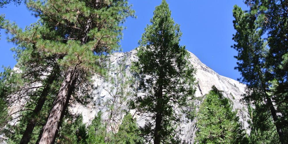 Yosemite National Park - California - Doets Reizen