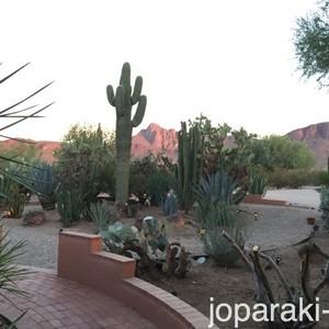 3 Aug : toe-toe Tucson - Dag 10 - Foto