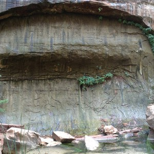 Bezoek aan Zion National Park - Dag 17 - Foto