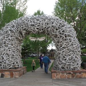 Grand Teton - Dag 15 - Foto