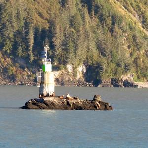 Prince William Sound - Dag 21 - Foto