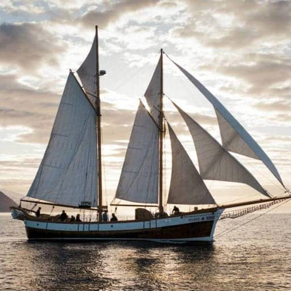 Classic Whale Watching From Husavik - Doets Reizen - Vakantie IJsland - Credits to Iceland Travel