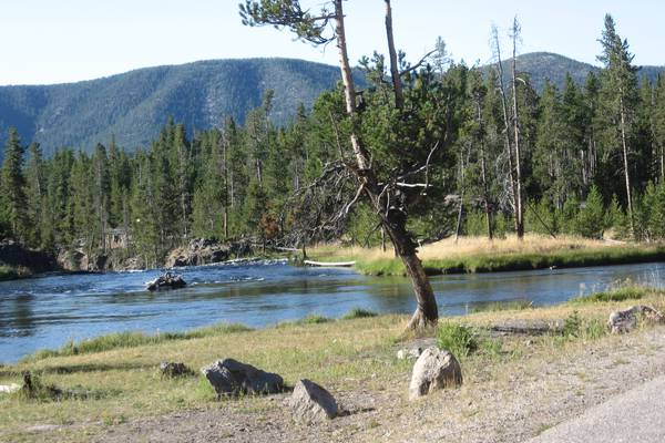 Yellowstone NP in Wyoming
