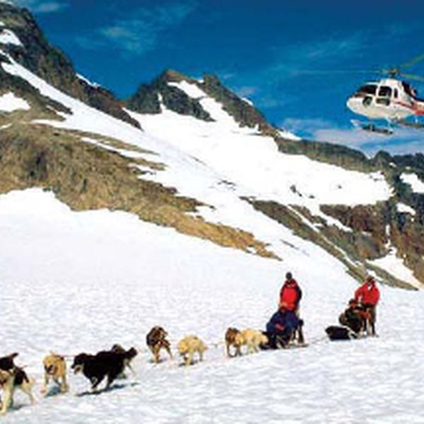 Dogsledding Tour Seward - Alaska - Doets Reizen