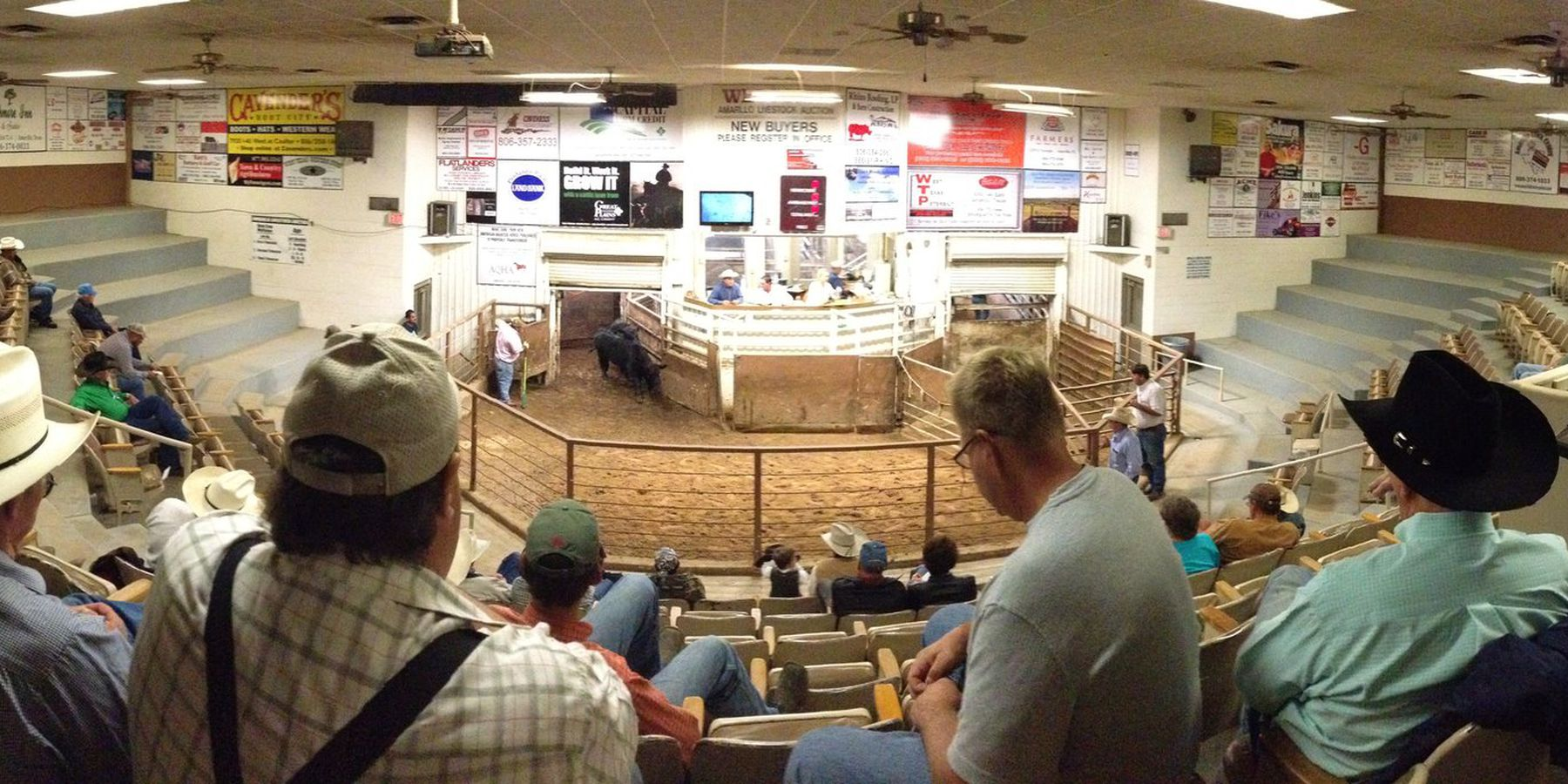 Amarillo Livestock Auction - Route 66 - Texas - Doets Reizen