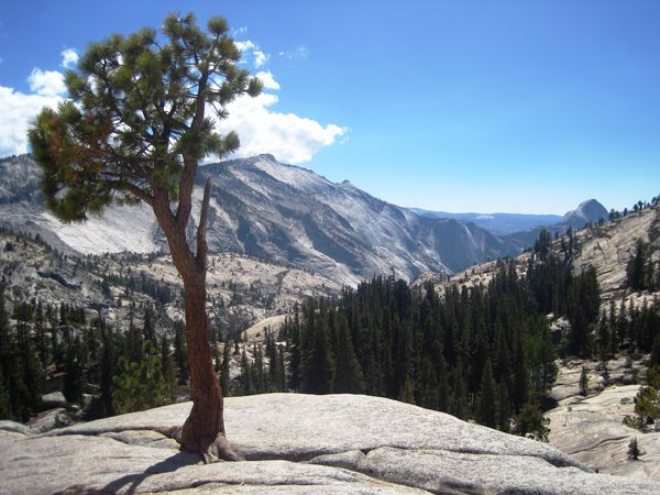 Tioga Pass in California