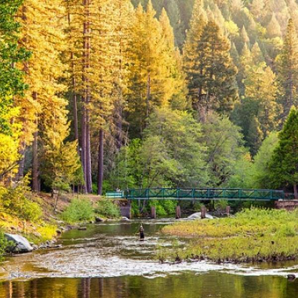 Yosemite Lakes RV Resort -