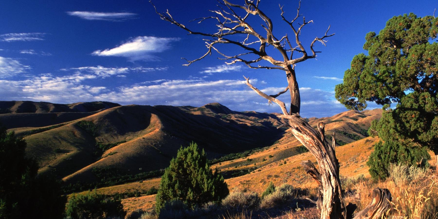Pocatello - Idaho - Amerika - Doets Reizen