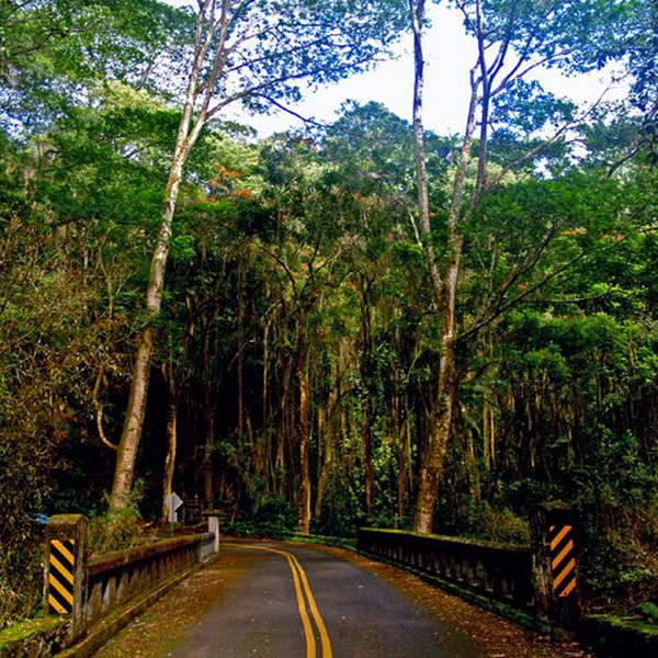 Bike the Old Mamalahoa Road Big Island Hawaii