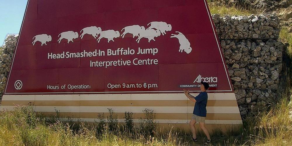 Entree met visuele uitleg hoe er op buffalo's gejaagd werd.