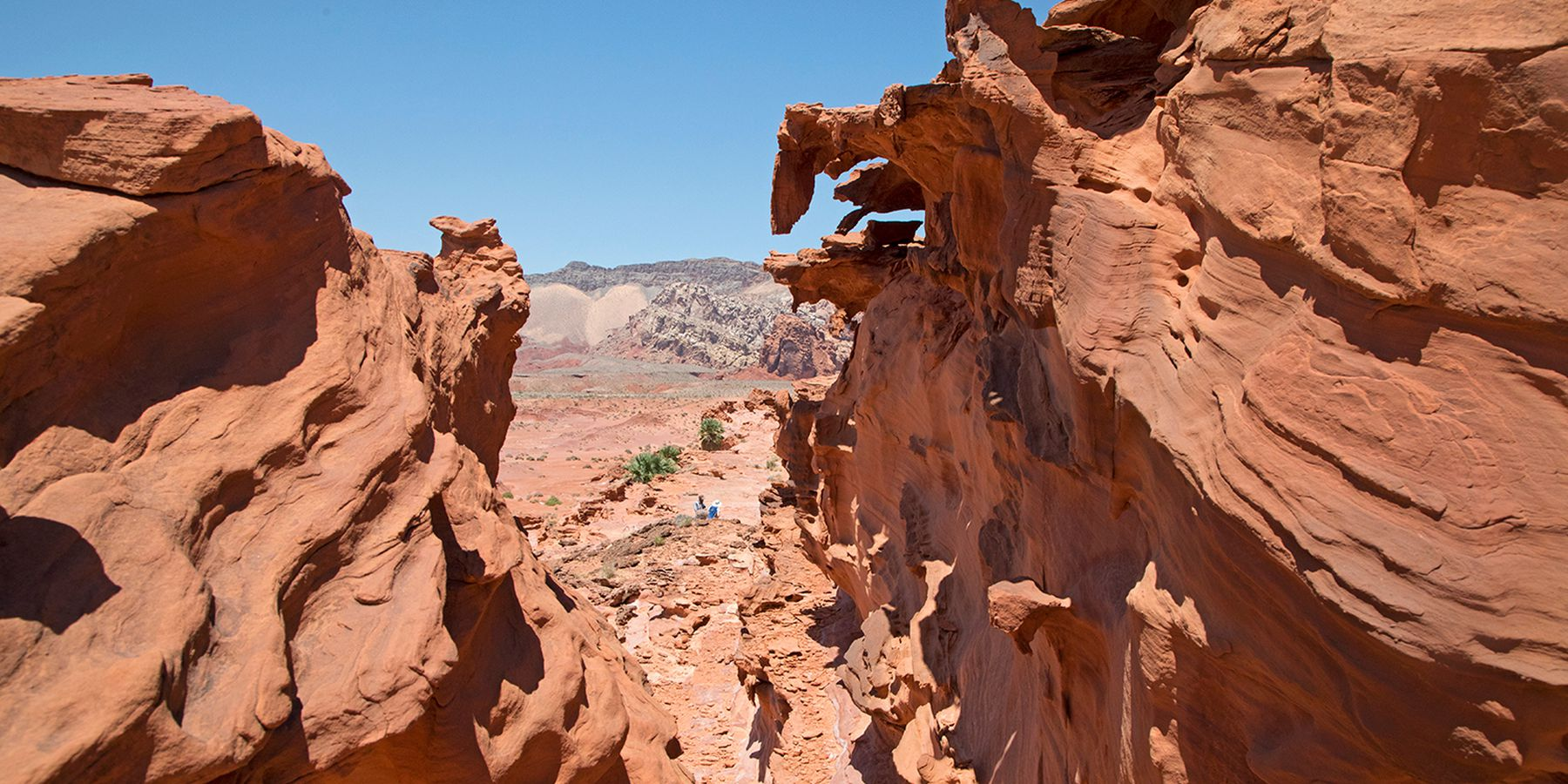 Gold Butte National Monument - Nevada - Doets Reizen - Credits Travel Nevada and Sydney Martinez