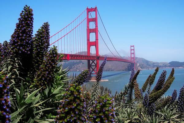 San Francisco Golden Gate Bride California