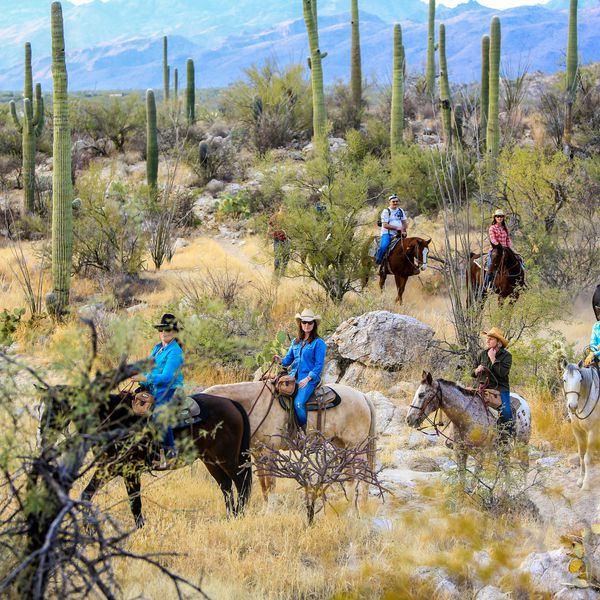 Tanque Verde Ranch - overzicht