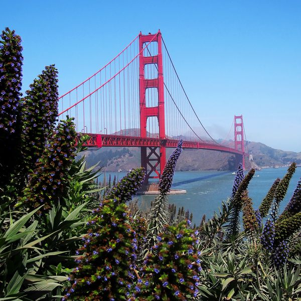 San Francisco Golden Gate Bride California