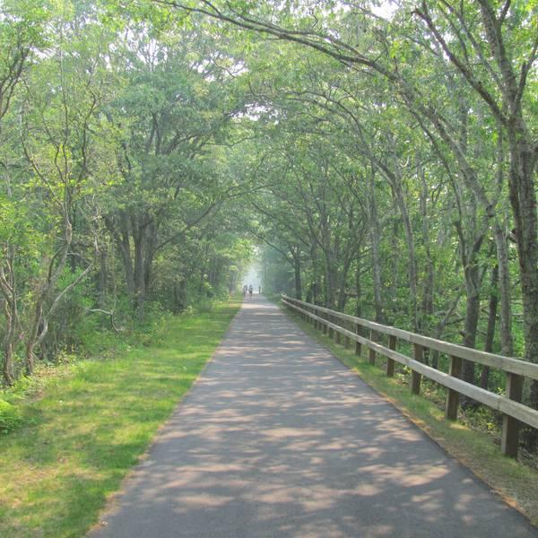 Brewster - Cape Cod - Massachusetts - Doets Reizen