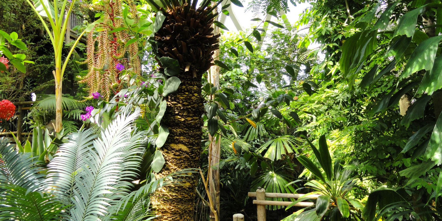 Denver Botanic Gardens - Denver - Colorado - Doets Reizen