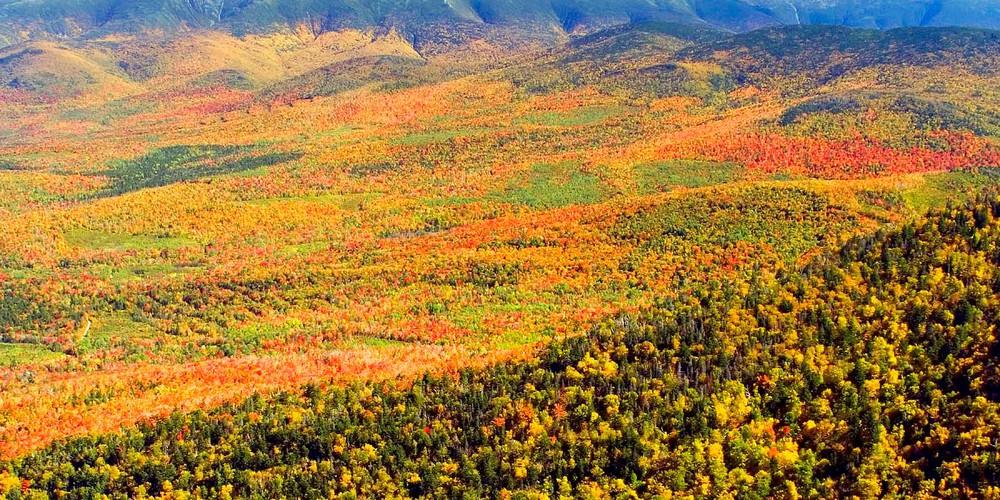 herfst in Vermont