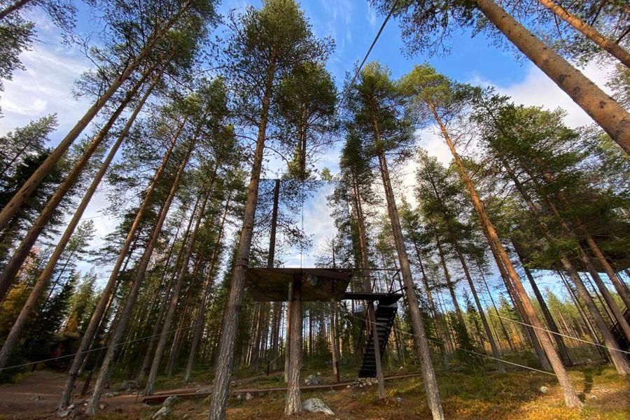 Elske Doets in Zweden - Treehotel - Treehotel Zweden - Treehotel Sweden - Vakantie Zweden - Doets Reizen