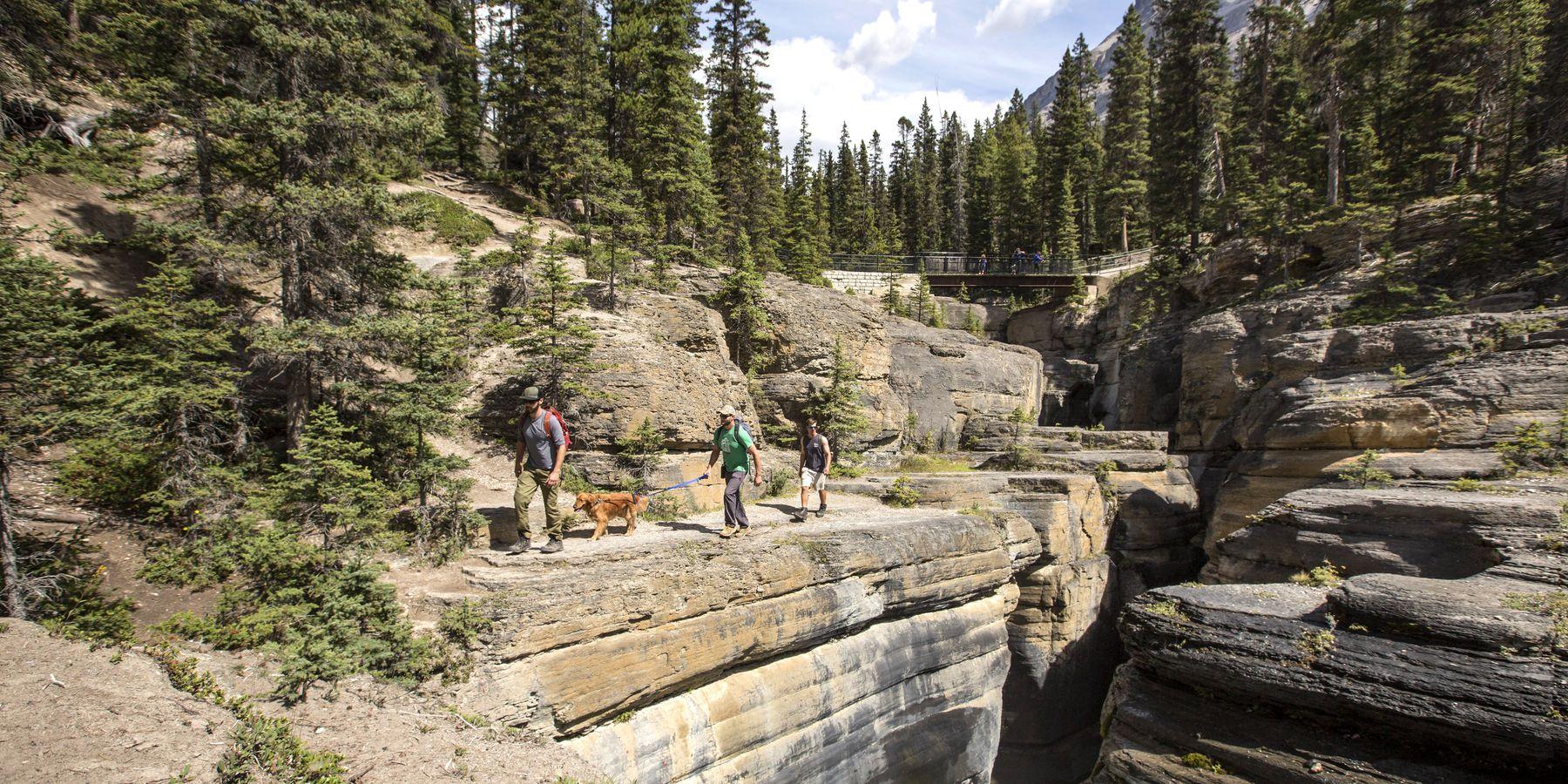 Mistaya Canyon - Banff National Park - Alberta - Canada - Doets Reizen