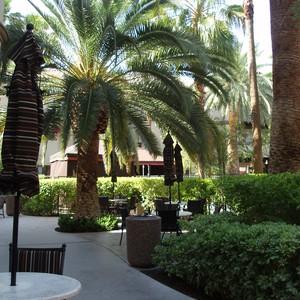Las Vegas - Dag 4 - Foto