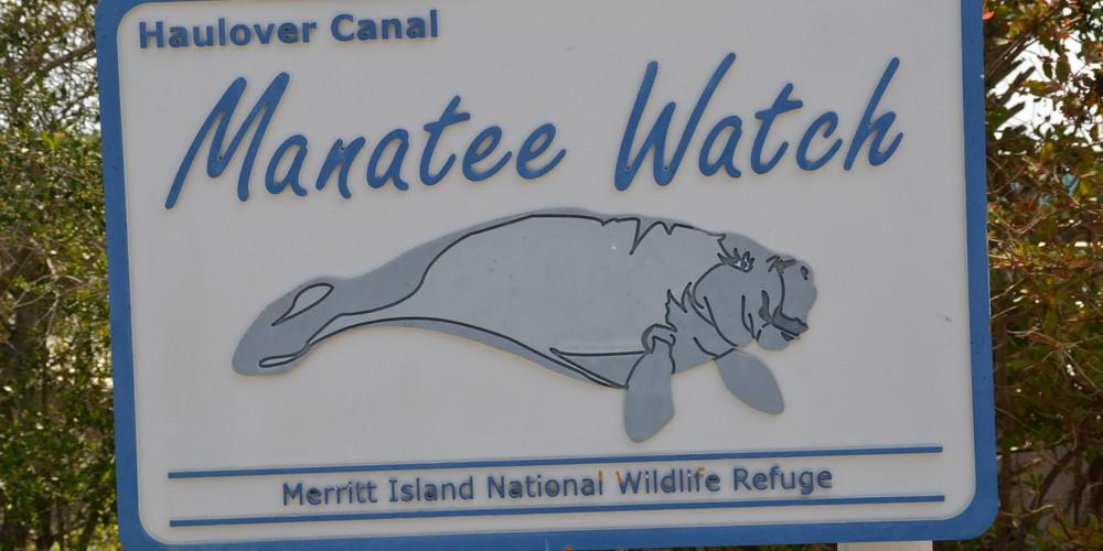 Merrit Island Wildlife Refudge Space Coast Florida