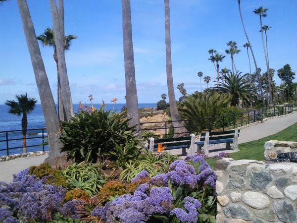 Laguna Beach - Los Angeles - California - Amerika - Doets Reizen
