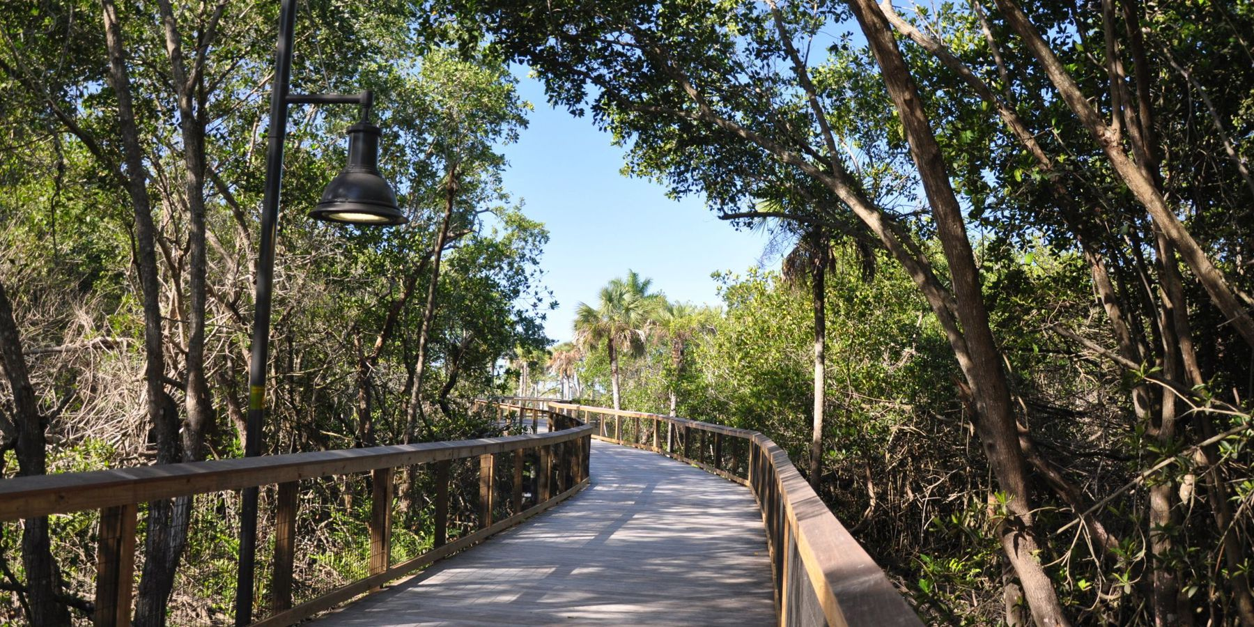 Boardwalk - Everglades National Park - Florida - Doets Reizen