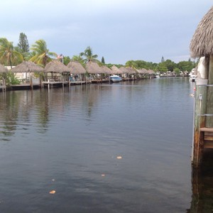 All the way South to the Keys! - Dag 7 - Foto