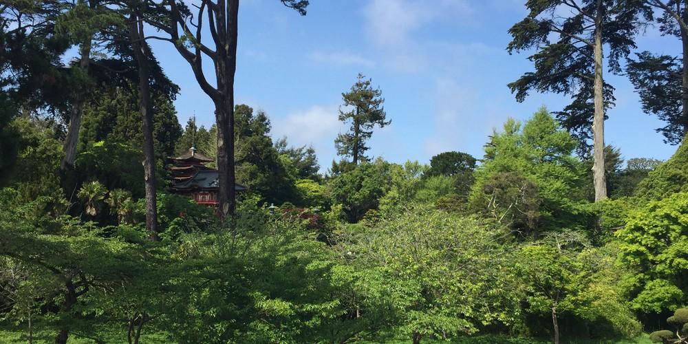 Golden Gate Park - San Francisco - California - Amerika - Doets Reizen