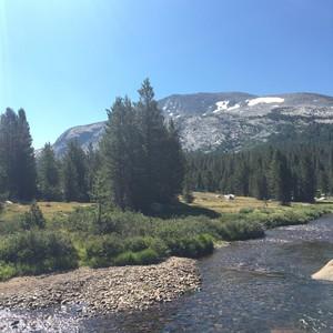 Yosemite NP - Dag 13 - Foto