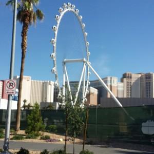 De terug reis (Las Vegas - Amsterdam) - Dag 28 - Foto
