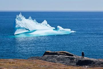 Western Bay - Newfoundland & Labrador - Canada - Doets Reizen