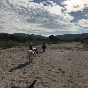 Finally, the Wild West! - Dag 12 - Foto