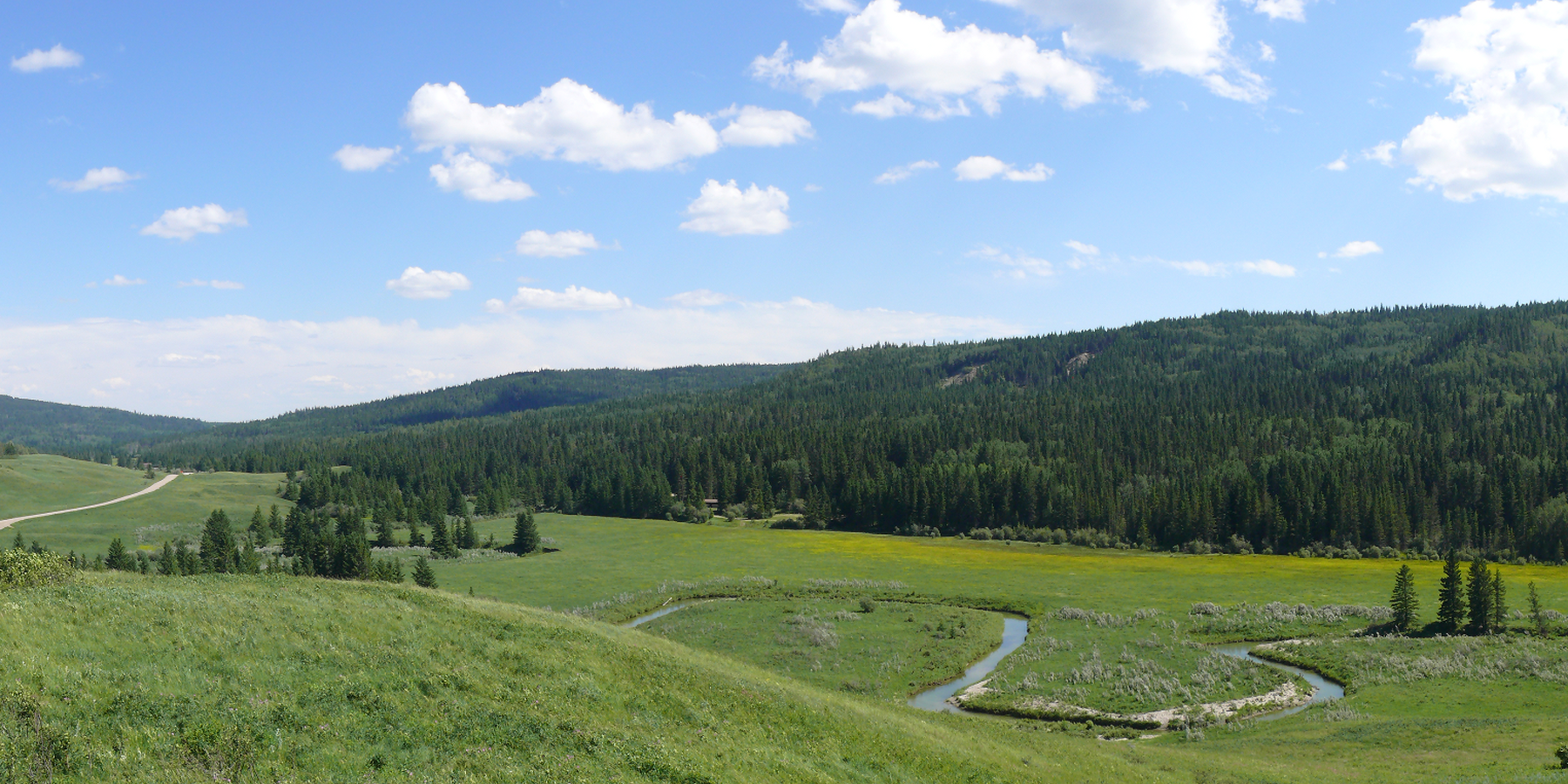Cypress Hills Interprovincial Park - Alberta - Canada - Doets Reizen