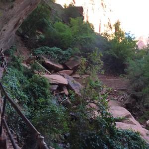 Zion National Park - Dag 17 - Foto