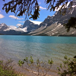 Saskatchewan Crossing - Lake Louise - Dag 19 - Foto