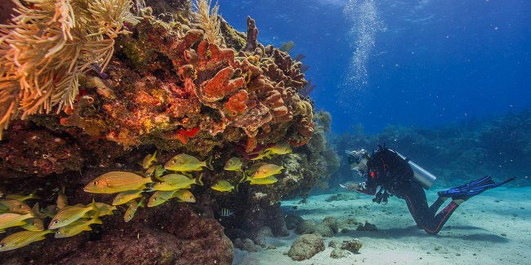 Biscayne National Park - Florida - Doets Reizen