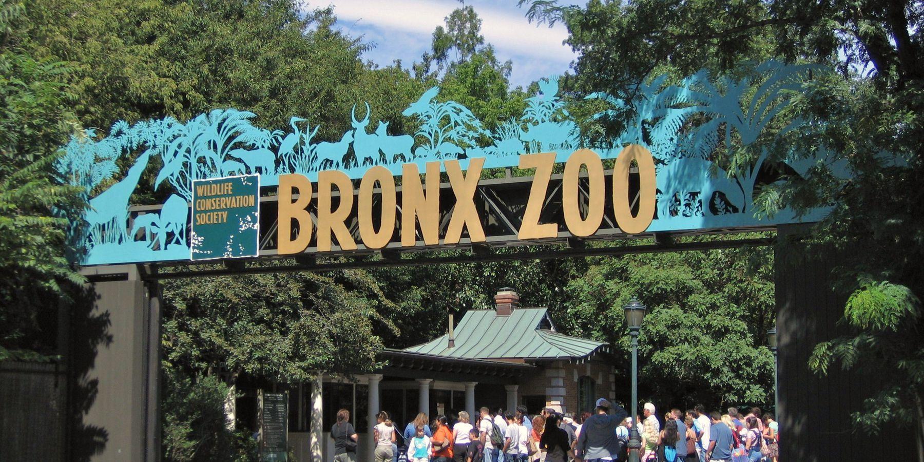 Bronx Zoo - New York - Doets Reizen